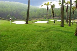 vietnam golf club