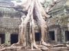 cambodia-gallery-9